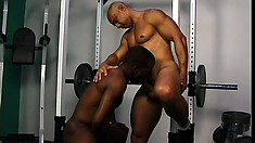Big and powerful ebony sport master splits huge brown ass with his dong