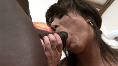 Stacked brunette cougar in fishnet stockings Sofia fucks a black stick