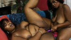 Chunky black lesbians eat out each other's twats and enjoy their time with sex toys