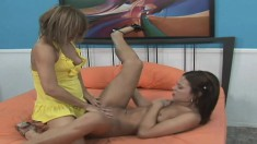 Lucky young girl has some fun with smoking hot babe Alyssa Reece