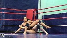 Two athletic skanks fuck each other after fighting in a ring
