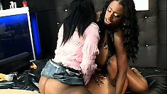 Two lustful ebony girls enjoy their time with a strap-on dildo and a big black cock