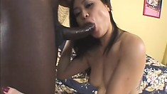 Exotic Girl Slides A Huge Black Rod Down Her Throat And Then Takes It In Her Twat