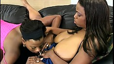 Horny black bitches get wild with each other on a leather couch