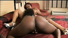 Two chubby ebony lesbians eat pussy and then fuck with a double dildo
