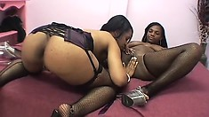 Sexy black lesbians love to finger and taste each others' pussies