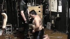 Chubby cocksucker Lycan drops to his knees and gives a great blowjob